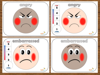Large Emotion Faces