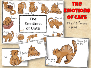 The emotions of cats